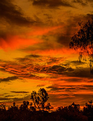 Lakeside Sky on Fire - Explored (Bill Gracey) Tags: california sky clouds sunrise silhouettes atmosphere lakeside