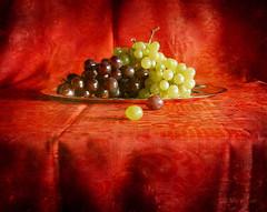 Christmas Grapes (MargoLuc) Tags: christmas light red stilllife white texture window yellow fruit contrast table december natural silverware time grapes athome uva tones brilliant vassoio