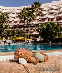 POTD 06 February 2013: Beni at the pool (Ian M Butterfield) Tags: bear sun building water pool sunshine weather swimming swim buildings toy toys hotel spain europe european teddy bears eu objects sunny potd plush swimmingpool palmtree teddybear tenerife hotels es accommodation relaxation teddies sunbathing sunbather teddybears cuddlytoy softtoy espania beni cuddlytoys swims swimmingpools softtoys cuddlies loscristianos sunworshippers placetostay