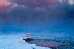 Jan 22: Winter Fog (_Matt_T_) Tags: winter pentax lakeontario 18 hfg industar502 ƒ8 justpentax k5iis singlechallenges sijan2014 murraystreetpark