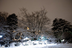 snow_walk_with_suzanne-11