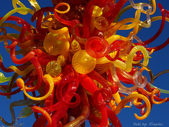 Chihuly's Reds & Yellows (Shotz by TCreates) Tags: blue red arizona usa chihuly art glass phoenix yellow united exhibit states desertbotanicalgarden ilobsterit vision:plant=0698 vision:flower=0588