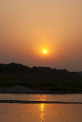 Sunset over a Chitwan River (William J H Leonard) Tags: park travel nepal sunset sky sun colour travelling water silhouette river skyscape landscape asian nationalpark asia sundown bank nepalese chitwan nepali southasia southasian travelphotography chitwannationalpark chitwandistrict chitwanvalley