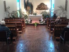 "14.04.19 tante persone hanno portato i fiori al sepolcro di Gesù • <a style=""font-size:0.8em;"" href=""http://www.flickr.com/photos/82334474@N06/13978387203/"" target=""_blank"">View on Flickr</a>"