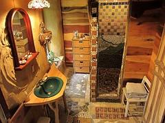 Sam Droege's bathroom mosaic