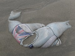 Sand Wearing a T-Shirt (mikecogh) Tags: beach sand tshirt full british lonely nadi smugglerscove