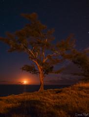 coucher de lune ( moonset réunion Island  ) (tidep) Tags: moon reunion lune island reunionisland coucherdelune danielpayet
