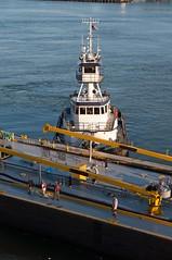 Tugboat (nyperson) Tags: tugboat barge workingharbor