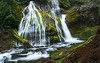 Panther Creek Falls (M3tr1c) Tags: panther creek falls waterfall river wet flow rush rock moss rocks logs trees waterfalls columbia gorge gifford pinchot national forest