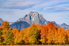 Fall Palette at Mount Moran (craig goettsch) Tags: grandtetonnationalpark mountmoran mountain autumn fall fallcolors aspen gold yellow red orange nature wyoming landscape nikon d810 sunrays5 ngc