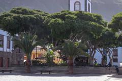 DSCF8127 (codrin44) Tags: anaga canarias joana masca taganana teide tenerife yves mer