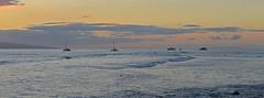 The Pacific Ocean, off of Lahaina, Hawaii, USA (trphotoguy) Tags: westmaui maui hawaii hi sunset lanai lahaina coast ocean island pacificocean 3570mmf28d