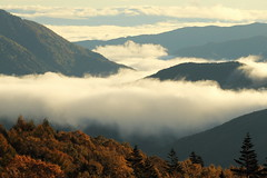 Sea of clouds (Teruhide Tomori) Tags: chbusangakunationalpark landscape japan nagano mtnorikura nature seaofclouds sky morning light clouds tree mountain forest peak mountainridge mountainside
