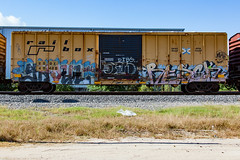 (o texano) Tags: houston texas graffiti trains freights bench benching ghoul ghouls resek sws wh d30 adikts a2m