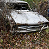 DSC_0490 v2 (collations) Tags: ontario mcleansautowreckers autowreckers wreckers automobiles autos abandoned rockwood derelict junkyards autograveyards carcemeteries