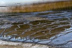 Grand Prismatic Spring (paolo.gislimberti) Tags: parchinazionali nationalparks yellowstonenp parcodiyellowstone meteturistiche touristdestinations geology geologia geysers geologicalphenomena fenomenigeologici sorgenticalde hotsprings reflections riflessi pozzesulfuree sulphurpuddles residuicalcarei calcareousdeposits