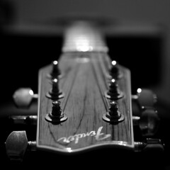 fender (brescia, italy) (bloodybee) Tags: 365project acoustic guitar music instrument fender strings tuningpegs headstock stilllife bokeh bw