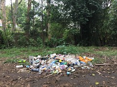 Nairobi Arboretum - pollution