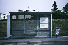 Watteau (Leo Hidalgo (@yompyz)) Tags: canon eos 6d dslr reflex yompyz ileohidalgo fotografa photography vsco amiens france travel francia viaje