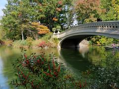 Bridge at Central Park (Tonio06fr) Tags: autumn daylight newyork color bridge centralpark water lake fall light trees tree colored america nyc usa smallboat