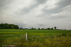 Daytime Lightning (awaketoadream) Tags: ontario canada field clouds spider summer lightning weather storm thunderstorm farm thunder southern afternoon oxford thundershower thamesford