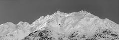 Tip Top (Traylor Photography) Tags: alaska avalanche winter top monchrome snow panorama blackandwhite seward mountain unitedstates us