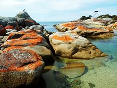 Rock formations in Binalong bay - Tasmania - Australia (pacoalfonso) Tags: pacoalfonsocom travel australia tasmania binalong bay fires landscape rock