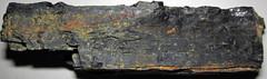 Bituminous coal (Washington Coal, Upper Pennsylvanian; Narrows Run South roadcut, near Powhatan Point, Ohio, USA) 4 (James St. John) Tags: bituminous coal coals washington formation dunkard group pennsylvanian belmont county ohio