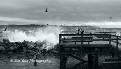 Crashing Waves on White Rock Beach, White Rock BC (PhotoDG) Tags: wave whiterock canada beach pier blackandwhite crashingwave whiterockbc landscape seascape metrovancouver ef50mmf14usm