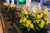 20161119_decoracao_espaco_michelle_mazzinni_0738.jpg (Fabio Gomes da Silva) Tags: ornamentação espaçomichellemazzinni salãodefesta viriato ornamentos flores decoraçãodecasamento enfeites decoração buquê belohorizonte minasgerais brasil br