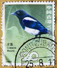 great stamp Hong Kong, China $ 20.00 Eurasian magpie (Elster, Pica pica, , szarka, , , urraca comn, , Sroka zwyczajna, Pie bavarde, gazza ladra)  Briefmarke  Postzegel zegel zegels postzegel    znaczki  Frimr (thx for sending stamps :) stampolina) Tags: china commonwealth stamps stamp  briefmarke briefmarken  postzegel zegel zegels    znaczki  frimrker frimrken frimerker   bollo francobollo francobolli bolli postes timbres sello sellos selo selos raztka  blyegek markica antspaudai  pullar tem perangko bird vogel birds vgel asien asia hongkong eurasianmagpie elster picapica  szarka   urracacomn  srokazwyczajna piebavarde gazzaladra blau blue bleu