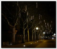 Christmas lights (Erik Reijnders) Tags: samsungnx2000 heemskerk holland night nacht