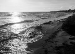 (holtelars) Tags: pentax 645 pentax645 645n 6x45 smcpentaxfa 45mm f28 120film 120 film foma fomapan fomapan100 fomapan100classic 100iso mediumformat analog analogue blackandwhite classicblackwhite bw monochrome filmforever ishootfilm filmphotography xtol homeprocessing larsholte beach waves seascape espergrde denmark danmark jobo autolab atl1500