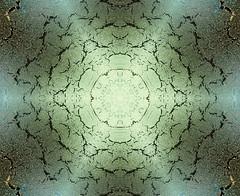 Frost flake (Apionid) Tags: frost snowflake winter ice kaleidoscope gimp nikond7000