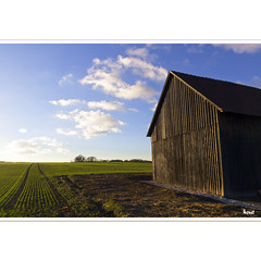 Striped (horstmall) Tags: htte scheune hut barn schuppen shed saat seed winterseed winterfrucht wintersaat agriculture landwirschaft bluesky cielbleu blauerhimmel schwbischealb jurasouabe swabianalps geometry geometrie horizont horizon grabenstetten flur horstmall