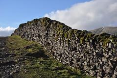Littondale wall (katy1279) Tags: littondale yorkshiredales drystonewall permanent standingthetestoftime