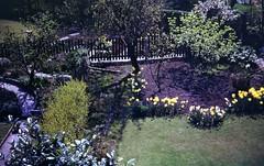 img228 (foundin_a_attic) Tags: april 1973 street houses homes fashion eveyday life england suburbs garden flowers