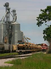 "The North End, Defined [Rail Visions ""Multiples"" Entry] (Wide Cab) Tags: grain grainelevator flatcar sd402 wsor oshkoshwi coveredhopper l595 watco wisconsinsouthernrailroad oshkoshsub oshkoshcorp"