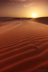 ( ibrahim) Tags: sunset sky sun nature clouds canon landscape photography eos sand desert tokina camel drought  ibrahim product abdullah       50d      canon50d  altamimi      tokina1116mm      almethnab