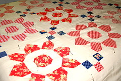 Fig Tree quilts (madebymum) Tags: blue red tree by hand quilt fig made mum quilting quilts avalon