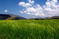 Vento e nuvole (raffaphoto) Tags: castelluccio sibillini montisibillini estate2013 fioritura2013 21luglio2013