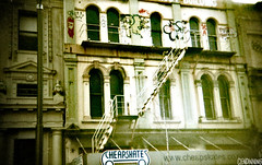 Cuba Street (Holga 135BC) (smellerbee) Tags: windows newzealand urban colour building stairs analog vintage holga lomography oldschool nz wellington fireescape analogue grainy cubastreet holga135bc