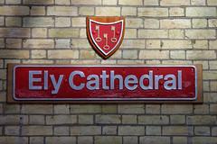 ely の壁紙プレビュー