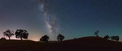 Paso Robles Panorama (Silent G Photography) Tags: nightphotography panorama oak wine pano adobe astrophotography paso nik centralcoast winecountry vino pasorobles lightpollution milkyway reallyrightstuff rrs centralcoastwine 2013 fh55 markgvazdinskas silentgphotography silentgphoto tvxc33