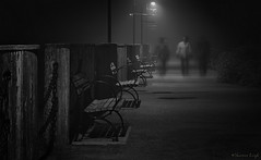 friends going for an evening boardwalk stroll in the fog (Shannon Leigh Photography) Tags: street ladies friends bw fog pier streetphotography boardwalk silouettes shannonleighphotography