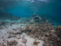 Blue hole and The Canyon (Stig Sarre) Tags: red sea dahab redsea olympus inon epl3 uwlh100