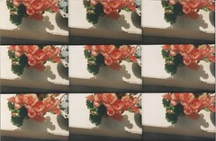 Pop 9 Lomography (Bruna Pastore) Tags: analog lomo lomography 9 pop analgico pop9lomography