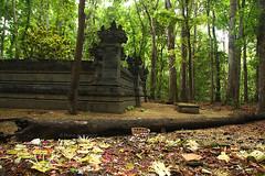 Situs Kawitan 2 (p3nnylan3) Tags: indonesia nationalpark adventure backpacking eastjava jawatimur alaspurwo banyuwangi merubetiri