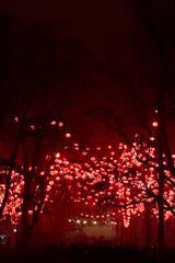 L'alle (ExperiencesPhotographiques) Tags: france canon lyon paysage nuit parc brouillard rhone ftedeslumires rhonealpes parcdelattedor poselongue paysageurbain ef24105mmf4lisusm formatportrait canoneos6d