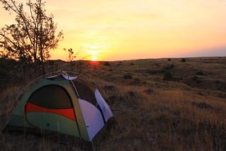 Morning Camp in the Juniper Dunes Wilderness